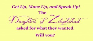 SHERRY-BOYKIN-DAUGHTERS-OF-ZELOPHEHAD